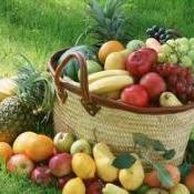 Frutas do mês de fevereiro