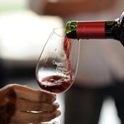 Bento Gonçalves sedia encontro de confrarias do vinho