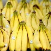 Plástico de Fruta