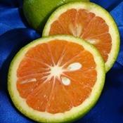 Frutas que combatem a insônia