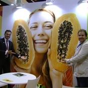 Exportações brasileiras de frutas devem atingir US$ 1 bilhão, até 2018