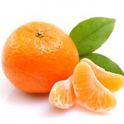 Tangerina, conheça a mãe das laranjas