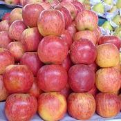 13 motivos para comer maçã todos os dias